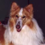 roxie2001