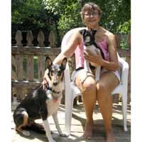 Haven-Puppy-Belinda