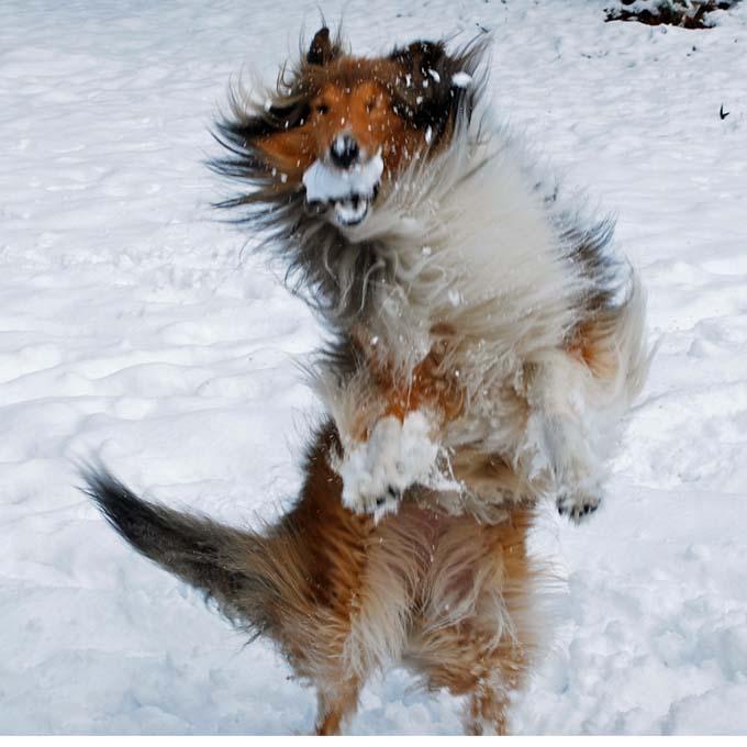 Mazie Snow