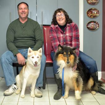 Adoptable Collies 171 Collie Rescue Of The Carolinas